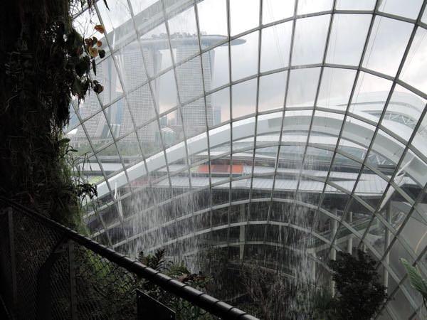 シンガポールの植物園「ガーデンズバイザベイ」