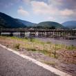 150813_kyoto_arashiyama_sightseeing_05