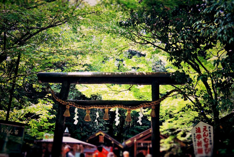京都嵐山観光野宮神社