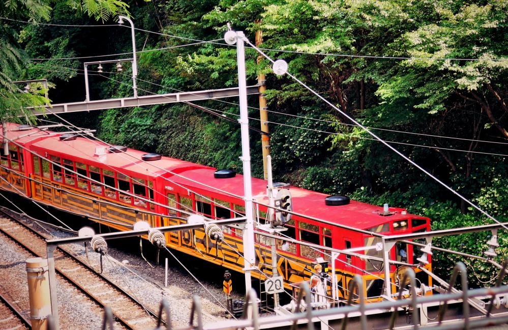 京都嵐山観光トロッコ列車